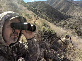 glassing for Coues deer
